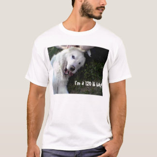 120 lb Baby T-Shirt