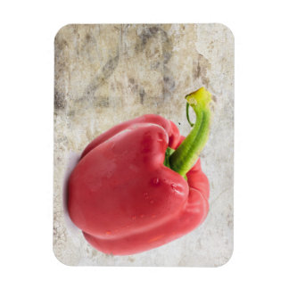 123 Red Bell Pepper Photo Magnet