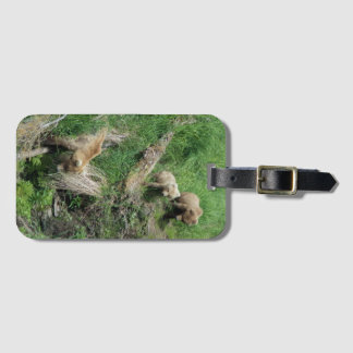 128 Grazer + Two Cubs - Luggage Tag