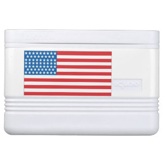 12 can cooler American Flag Design Front & Back