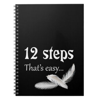 12 steps notebooks