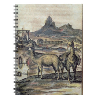 137-0627924 Illustration from a history of Peru sh Spiral Notebooks