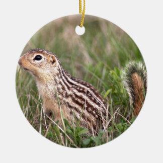 13 stripe ground squirrel ceramic ornament