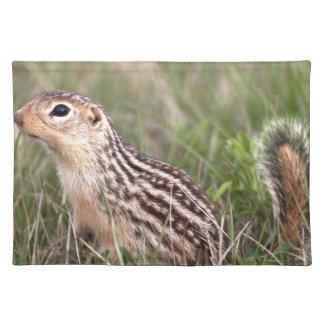13 stripe ground squirrel placemat