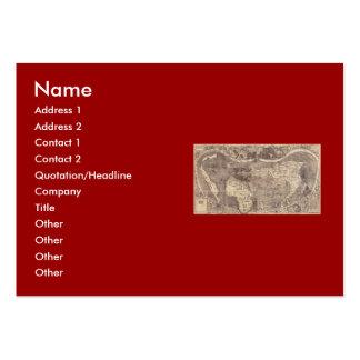 1507 Martin Waldseemuller World Map Large Business Card