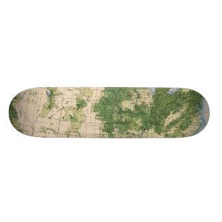 156 Wheat/sq mile Custom Skate Board