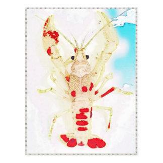 15873579_1416330921732017_2539621766324574947_n.jp postcard