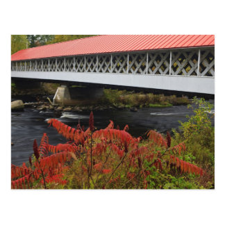 159-foot Ashuelot Covered bridge spanning Postcard