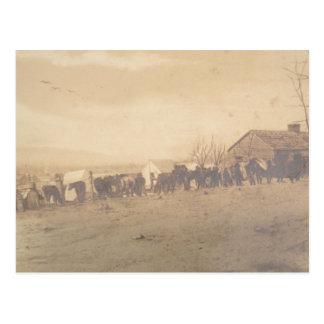 15th PA Cavalry 1865 Postcard