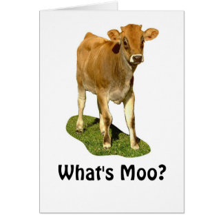 1607513, What's Moo? Card
