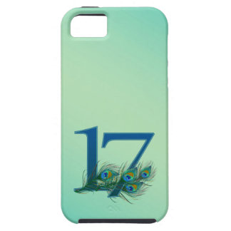 17th birthday or anniversary peacock numbers iPhone 5 case