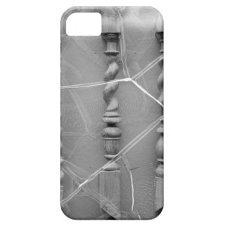 17th-century baluster iPhone 5 covers