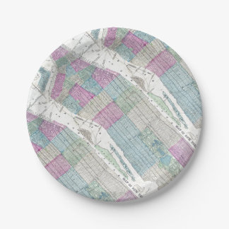 1870 Map New York City Central Park Paper Plate