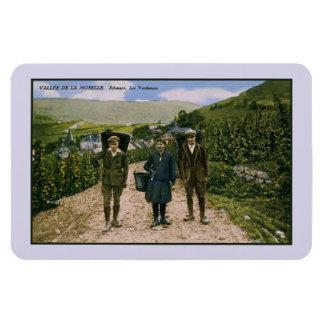 1900 Mosel wine harvest Schengen Luxembourg Magnet