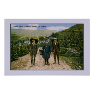 1900 Mosel wine harvest Schengen Luxembourg Poster