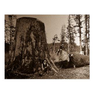 1903 Vintage Lumberjacks Magic Lantern Slide Postcard