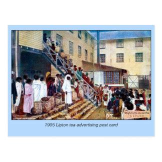 1905 Weighing the Tea Ceylon watercolor Postcard