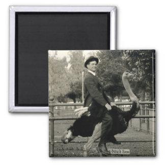 1910 Ostrich Riding Magnet