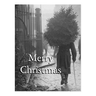 1915: A soldier carrying a christmas tree Postcard