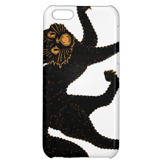 1920 Scary Black Cat iPhone 5C Covers