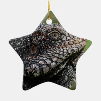 1920px-Iguanidae_head_from_Venezuela Ceramic Star Ornament