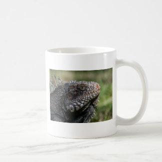 1920px-Iguanidae_head_from_Venezuela Coffee Mug