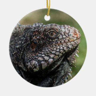 1920px-Iguanidae_head_from_Venezuela Round Ceramic Ornament