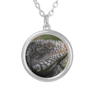 1920px-Iguanidae_head_from_Venezuela Silver Plated Necklace