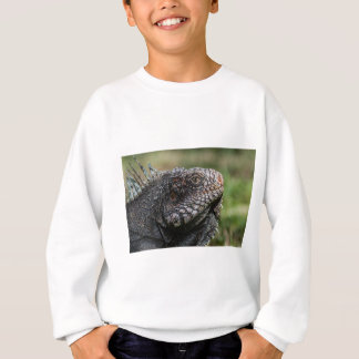 1920px-Iguanidae_head_from_Venezuela Sweatshirt