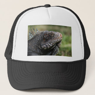 1920px-Iguanidae_head_from_Venezuela Trucker Hat