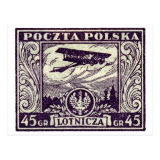 1925 45gr Polish Airmail Stamp Postcard