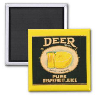1930s Deer Brand Grapefruit Juice label Magnet