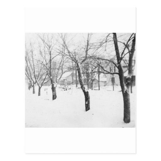 1960's Snowfall Post Card
