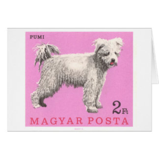 1967 Hungary Pumi Dog Postage Stamp Card