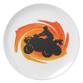 19 (11) PARTY PLATE