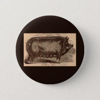 19th century farm animal print Berkshire sow breed 2 Inch Round Button