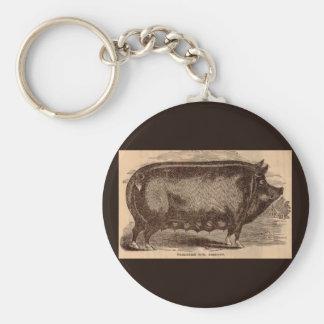 19th century farm animal print Berkshire sow breed Keychain