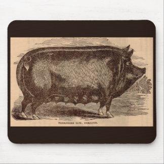19th century farm animal print Berkshire sow breed Mouse Pad