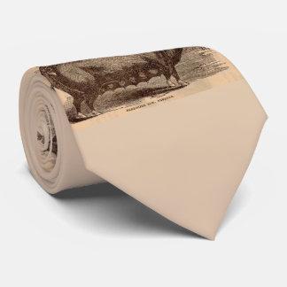 19th century farm animal print Berkshire sow breed Tie