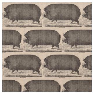 19th century farm animal print Berkshire sow pig Fabric