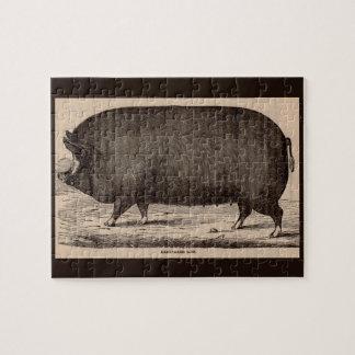 19th century farm animal print Berkshire sow pig Jigsaw Puzzle
