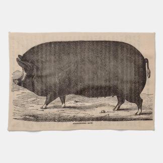 19th century farm animal print Berkshire sow pig Kitchen Towel