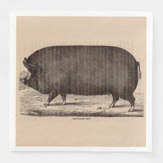 19th century farm animal print Berkshire sow pig Paper Dinner Napkin