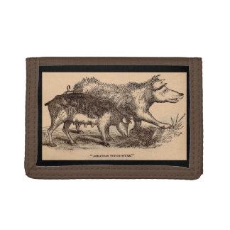 19th century farm animal print pigs print trifold wallet