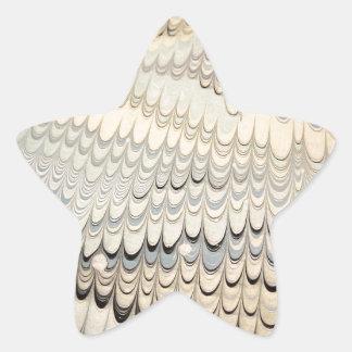 19th century marbled paper 7 Motif Star Sticker