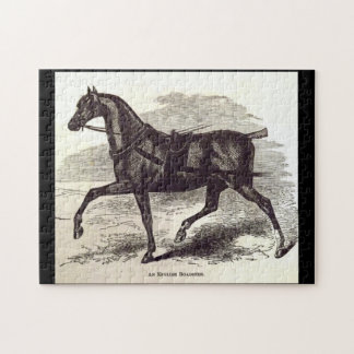 19th century print An English Roadster horse Jigsaw Puzzle