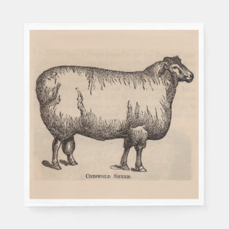 19th century print Cotswold sheep Disposable Napkins
