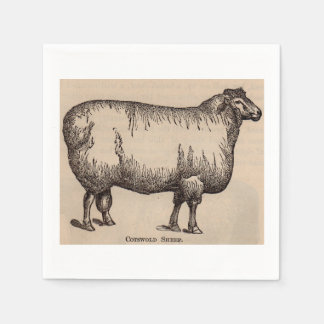 19th century print Cotswold sheep Paper Napkins