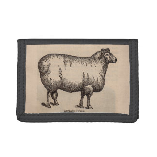 19th century print Cotswold sheep Trifold Wallets