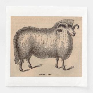 19th century print Dorset ram Paper Napkins
